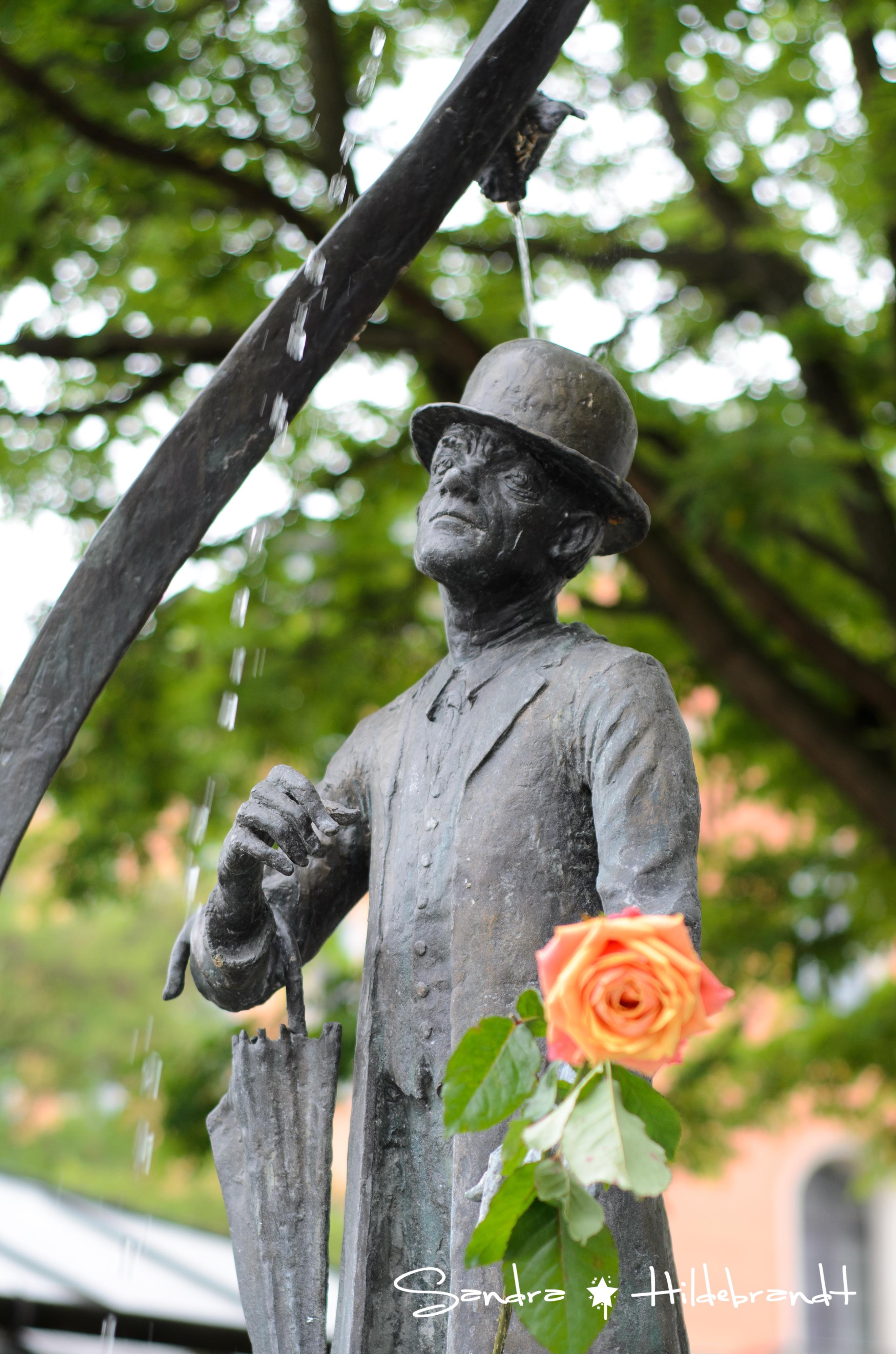 Die Rose von München